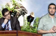 khiyari-chakib-mehdi-bensaid-pam-cannabis-c_photomontage