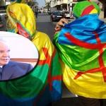 Une campagne présidentielle algérienne décevante  mais riche en enseignements