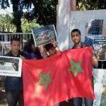 Des militants au chevet des animaux du Zoo d'Aïn Sbaâ