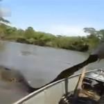 Un pêcheur fait une découverte effrayante dans l'eau (vidéo)