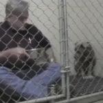 Quand un vétérinaire se glisse dans la cage d'un chien maltraité qui ne se nourrissait plus et se met à manger avec lui… Magnifique