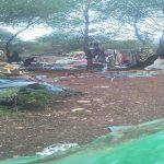 Nador: Des camps de migrants subsahariens évacués par la force